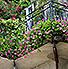 Wohlfühloase-Balkon