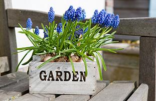 Setzen Sie Ihre Gartenbank gekonnt in Szene