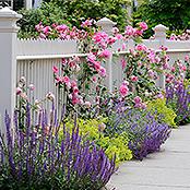 Ein Gartenzaun der den Vorgarten von der Straße trennt