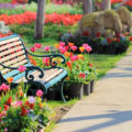 Einkaufsratgeber: Die passende Gartenbank finden