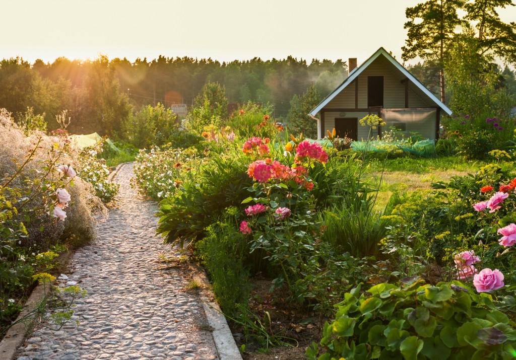 Pflegeleichter Garten Ein Garten Fur Faule Zuhause Bei Sam