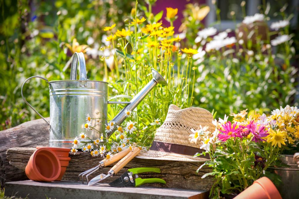 10 Tipps für einen pflegeleichten Garten - Zuhause bei SAM®