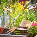 10 Tipps für einen pflegeleichten Garten