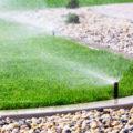 Garten im Frühjahr richtig bewässern - Bewässerungstipps