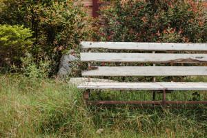 Gartenmöbel-Abdeckung - so schützen Sie ihre wertvollen Gartenmöbel
