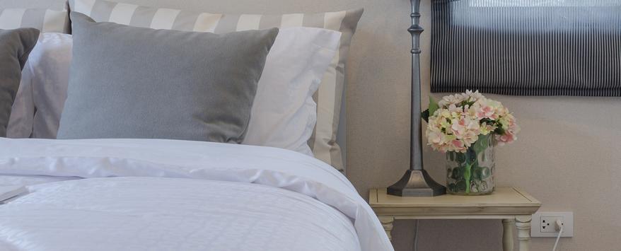 Pflanzen im Schlafzimmer - gut fürs Raumklima? - Zuhause bei SAM®