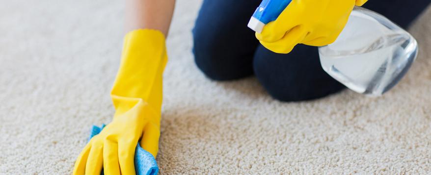 Gut gemocht Hochflorteppich einsetzen und pflegen - Zuhause bei SAM® MR85