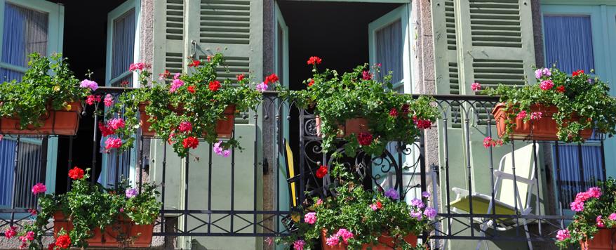 Balkon Mit Grünpflanzen Und Blumen Romantisch Französisch Gestalten
