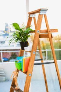 Zimmerpflanzen im Leiterregal