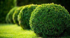 Bildquelle: © Yarygin/Shutterstock.com