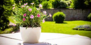 Bildquelle: © BildwerX Photography/Shutterstock.com