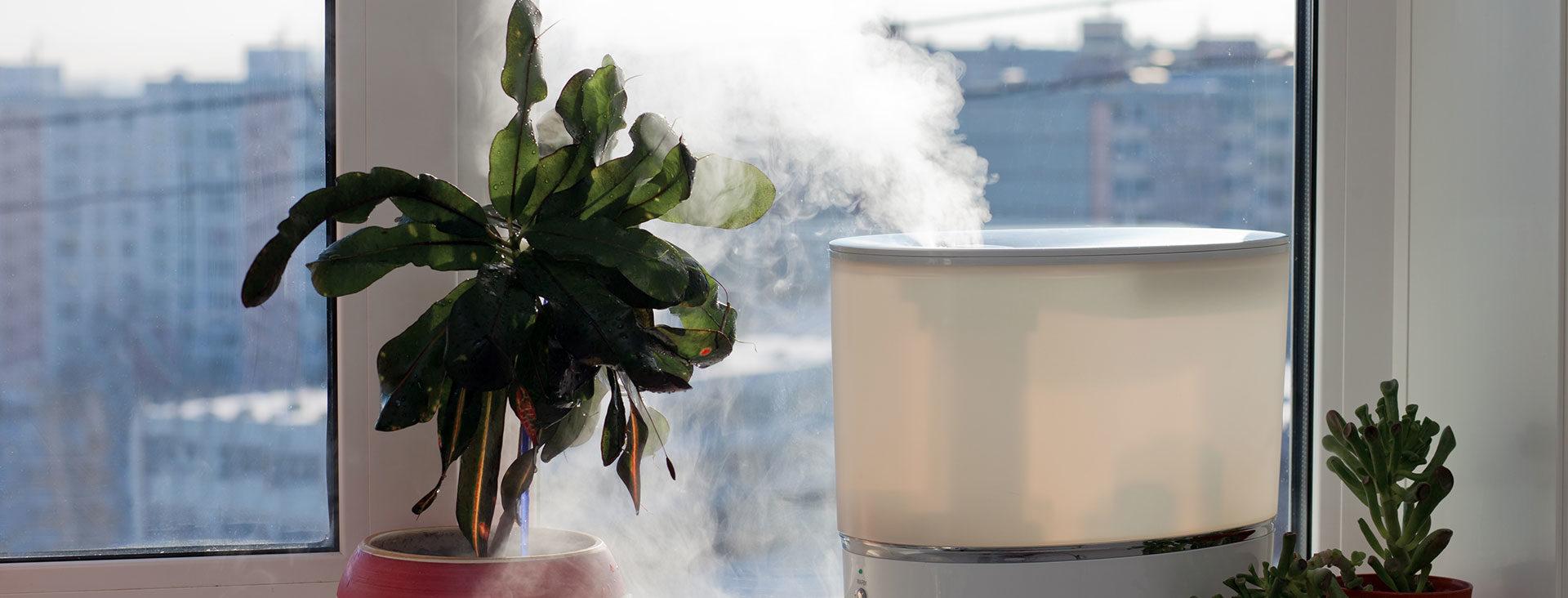 Schlechte Luft? Diese Top-3-Luftreiniger helfen Ihrer Wohnung ...